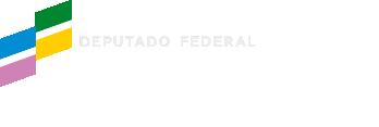 Helder Salomão - Deputado Federal